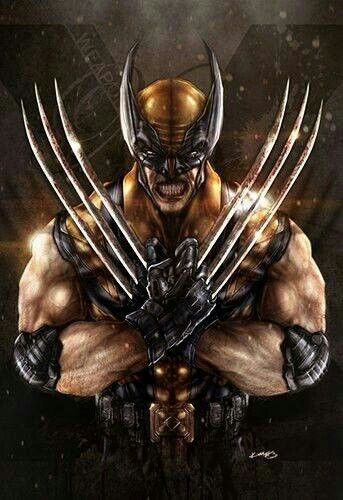 About: Logan - The Wolverine